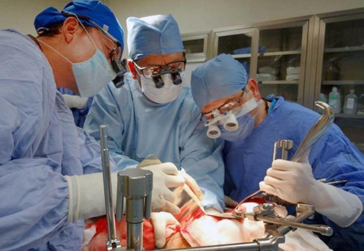 En 2017, el Hospital O'Horán realizó 7 trasplantes de riñón y 8 de córnea. (Foto: archivo/SIPSE)