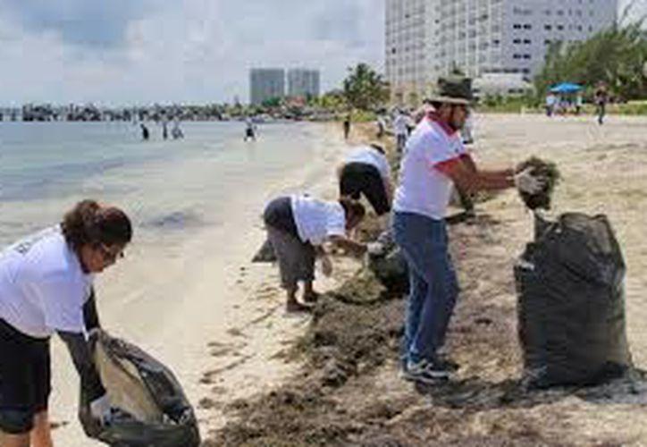 Los grupos de voluntarios levantan todo tipo de desechos en los arenales. (Redacción)