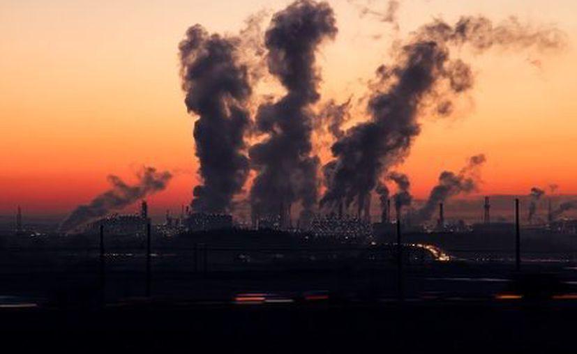 Una persona produce cuatro toneladas de CO2 en promedio al año.  (Milenio.com)