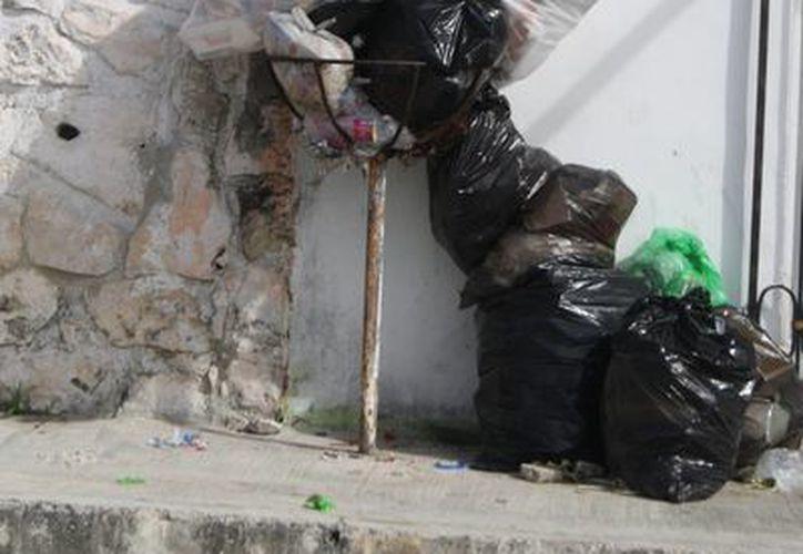 Recoja de basura es de lo que más se activará en este año. (Octavio Martínez/SIPSE)