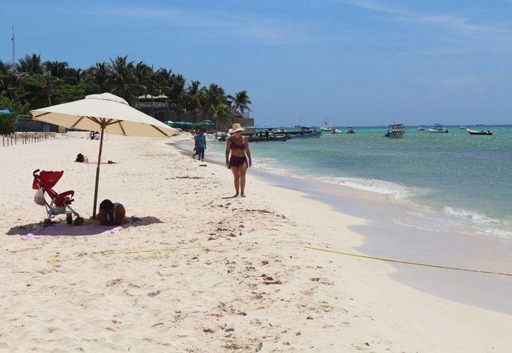 El número de usuarios de la Zofemat en Quintana Roo se triplicó en cuatro años.  (Adrián Barreto/SIPSE)