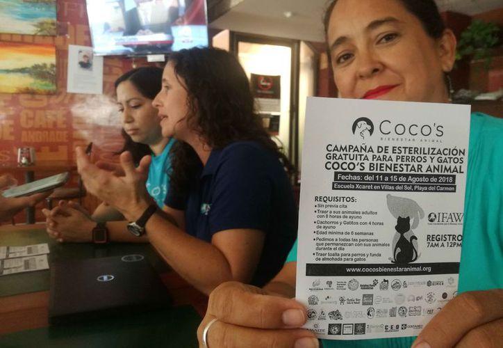 Las representantes de la asociación civil Coco's Bienestar Animal y del Fondo Internacional de Bienestar Animal presentaron la campaña. (Daniel Pacheco/SIPSE)