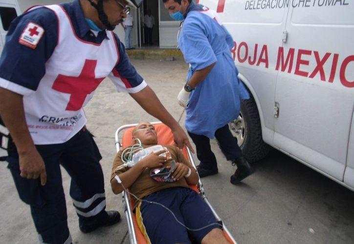 Por un mal manejo de las sustancias para realizar la fumigación de plagas seis trabajadores sufrieron una fuerte intoxicación. (Edgardo Rodríguez/SIPSE)