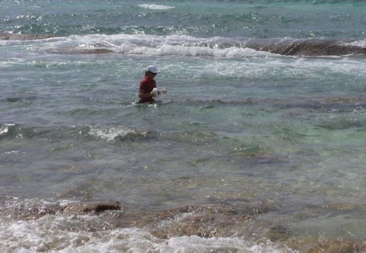 Uno de los principales objetivos del programa 'Playas Limpias' es el de proteger la salud de los usuarios. (SESA)