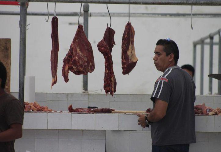 Descartan que los bacalarenses pudieran adquirir alguna enfermedad derivada del consumo de la carne de cerdo. (Archivo/SIPSE)