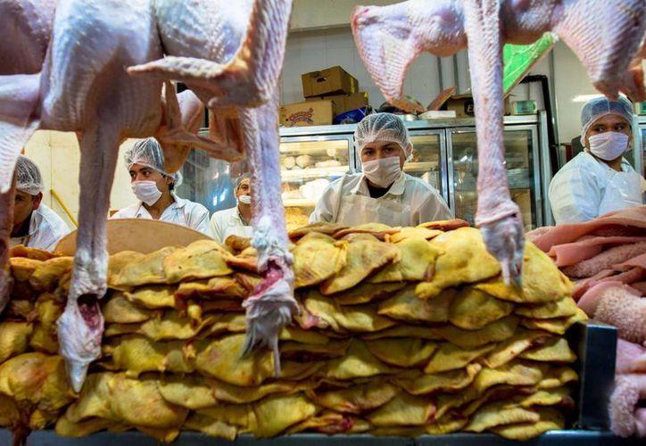 La apertura a la importación de pollo no significa que exista desabasto en el mercado mexicano. (Archivo/Notimex)