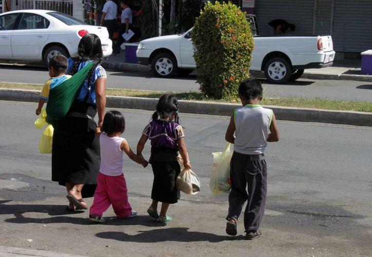 Quienes se encuentran rezago educativo no tuvieron estudios en la edad adecuada por problemas familiares, económicos, sociales o físicos. (Francisco Sansores/SIPSE)