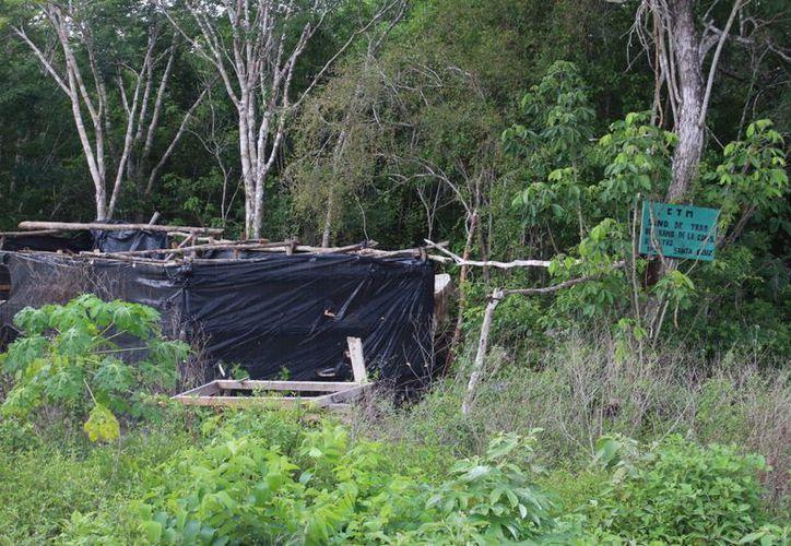 El predio donado, donde primero se dijo que se construiría un Planetario, actualmente está abandonado. (Carlos Horta/SIPSE)