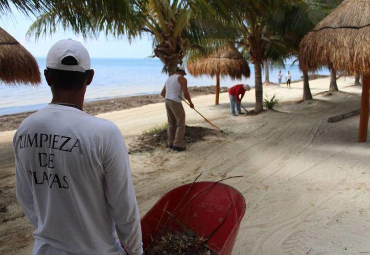 Todos los días realizamos el trabajo de monitoreo por las siete playas que cuentan con la certificación para mantenerlas al 100%. (Jesús Tijerina/SIPSE)
