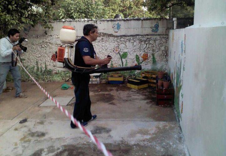 El combate al dengue se ha reforzado en escuelas de Mérida. (SIPSE)