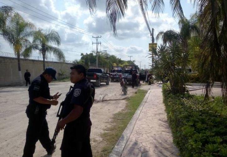 El 85% fueron ejecutados por policías ministeriales de la Fiscalía General. (Foto: Contexto/SIPSE)