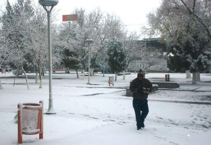 Continuarán las nevadas y las temperaturas bajas durante esta noche y los próximos días informó Protección Civil del Estado. (Notimex)