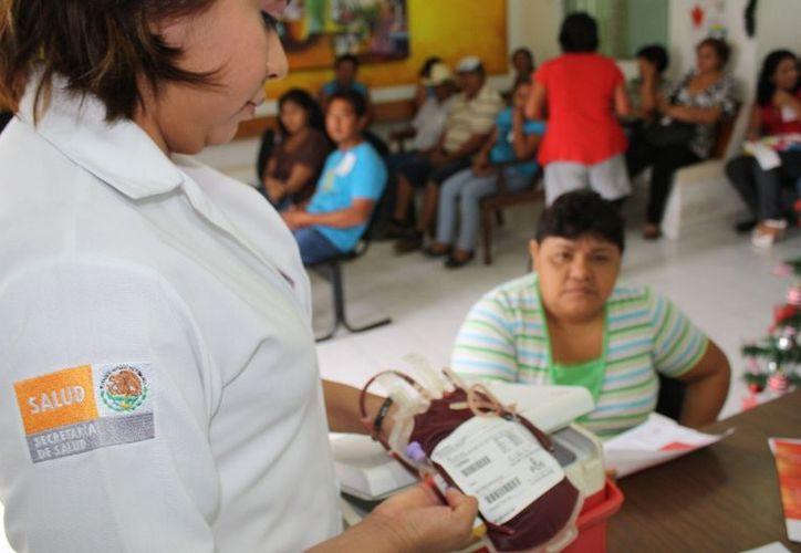 Reconocen labor de donadores de sangre altruista de la comunidad Álvaro Obregón, municipio Othón P. Blanco. Un grupo de 25 personas llegó para donar sin recibir nada a cambio, solo la satisfacción de saber que ayudarán a otras personas. (Redacción/SIPSE)
