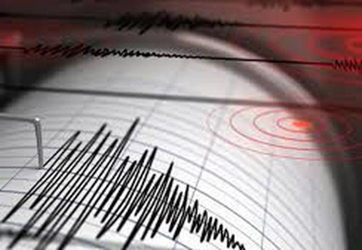 El Salvador descartó que existiera riesgo de tsunami tras el movimiento telúrico. (Contexto/ Internet)