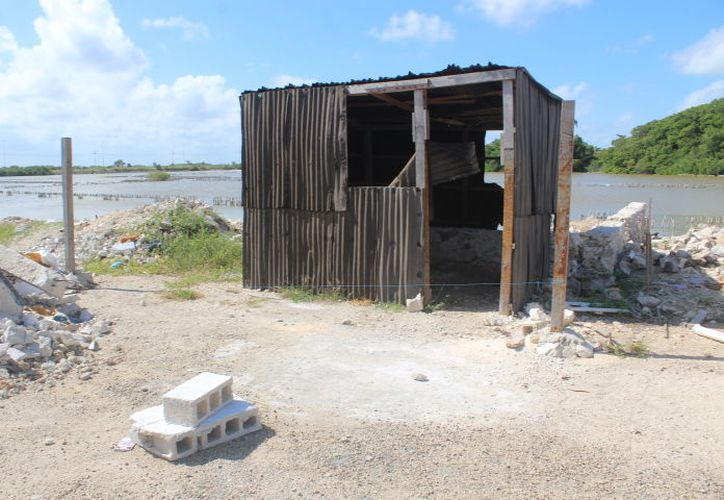 Invasores afirman que no detendrán la construcción de sus casas. (Gerardo Keb/Novedades Yucatán)