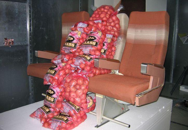 Saco de papas utilizado en un laboratorio en Arizona. (Agencias)