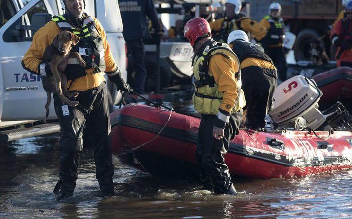 Un soicorrista alza un perro rescatado de la inundación provocada por el huracán 'Matthew' en Lumberton, North Carolina. (AP/Mike Spencer)