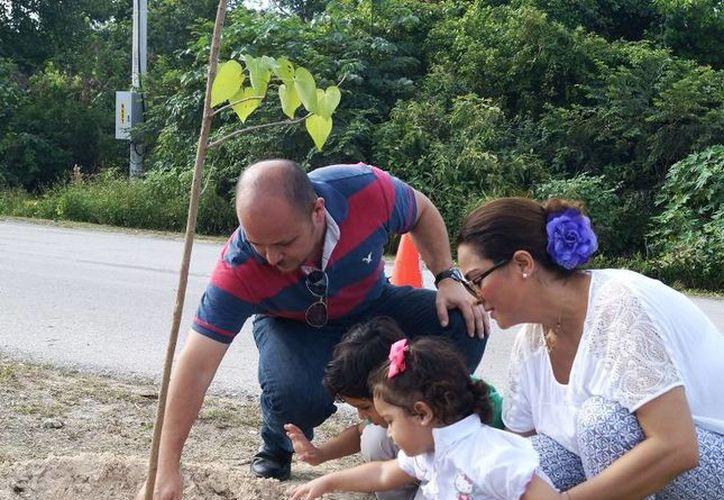 Por otro lado la empresa Plantamex, donó más de 150 árboles de especies endémicas. (Loana Segovia/SIPSE)