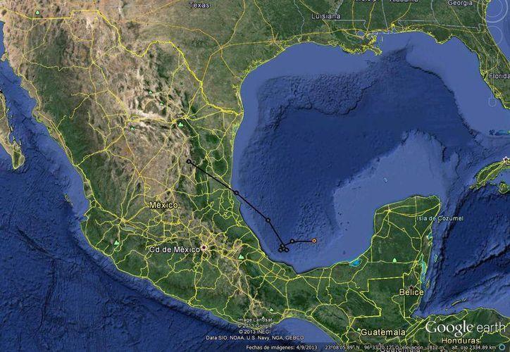 Posible trayectoria que seguirá la hasta ahora depresión tropical 10. (Conagua)