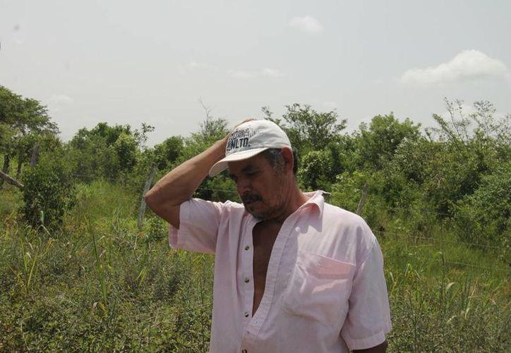 Habitantes de diferentes comunidades alzaron la voz luego de ser visitados por un asesor de la Secretaría de la Función Pública, que presentó documentos y fotos de los supuestos caminos realizados. (Edgardo Rodríguez/SIPSE)