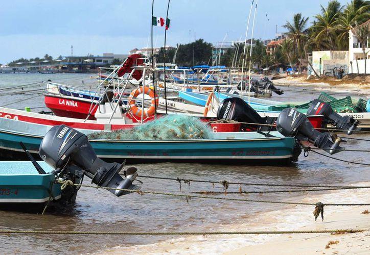 Las embarcaciones de la cooperativa están aparcadas debido a la temporada baja. (Octavio Martínez/SIPSE)