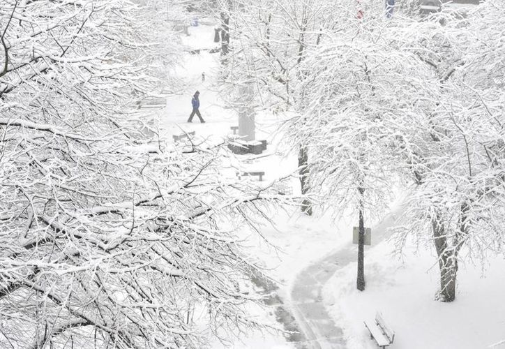 Se espera que la histórica tormenta invernal ocasiones que la nieve alcance los 60 centímetros de altura. (AP)