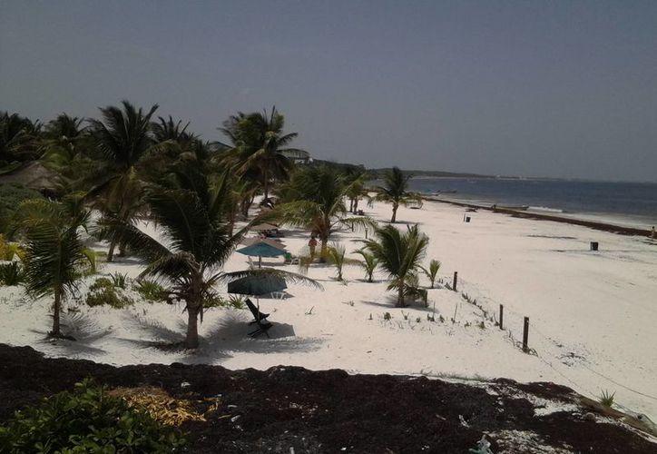 Las playas que se pretenden certificar se encuentran dentro del Parque Nacional Tulum. (Sara Cauich/SIPSE)