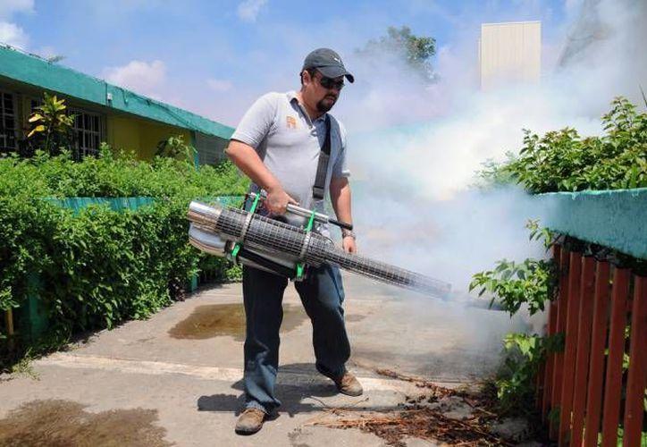 Los trabajos de fumigación se realizan en diversos planteles para evitar que cuando los estudiantes vuelvan a clases se contagien. (Redacción/SIPSE)
