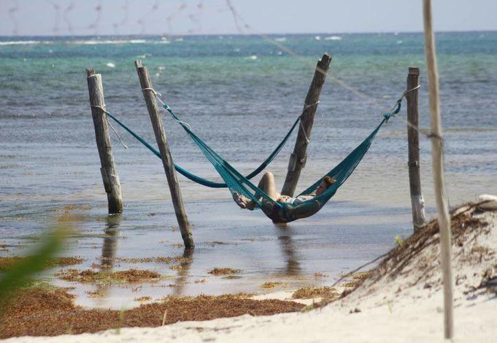 El año pasado se metió el proyecto del Observatorio de Playas, que estaría a cargo de la Universidad de Quintana Roo, pero que no logró concretarse. (Harold Alcocer/SIPSE)