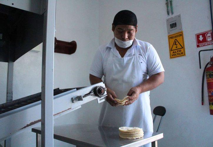 Tratarán los productores de contrarrestar el impacto del alza en los insumos. (Octavio Martínez/SIPSE)