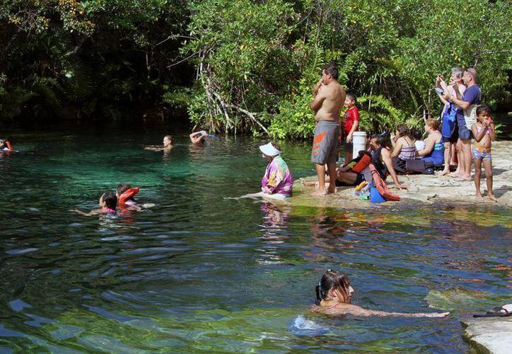 Los cenotes ubicados en 28 municipios yucatecos presentaron elementos contaminantes, algunos colindan con ciudades quintanarroenses. (Octavio Martínez/SIPSE)