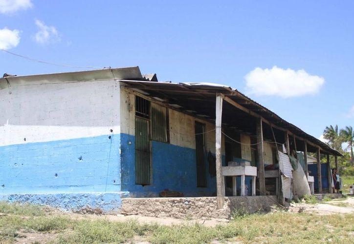 Las improvisadas galeras donde viven los cortadores de caña, carecen de todos los servicios básicos para una vida digna. (Harold Alcocer/SIPSE)