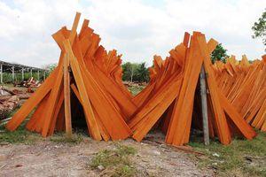 Productores forestales de Q. Roo comercializan maderas preciosas