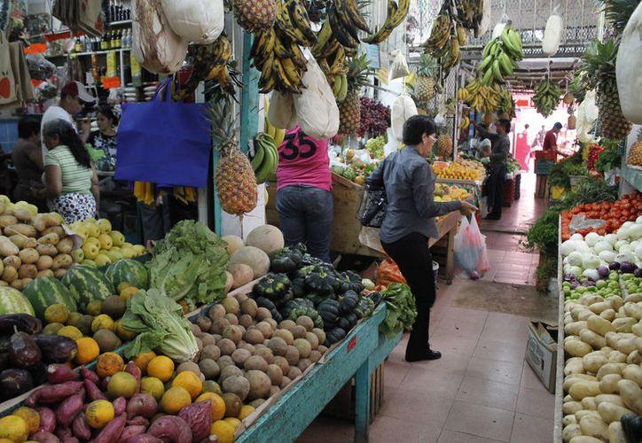 Los productores podrán exportar tequila, plátanos, aguacates y café orgánico. (Redacción/SIPSE)