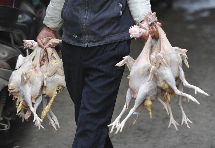 Un vendedor carga varias gallinas sacrificadas hacia su puesto en un mercado de Furáng, en la provincia de Anhui, China. (EFE/Archivo)