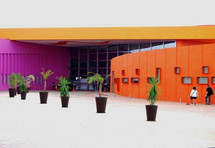 Integrantes de la institución recalcaron que Quintana Roo necesita generar conciencia en la sociedad. (Jesús Tijerina/ SIPSE)