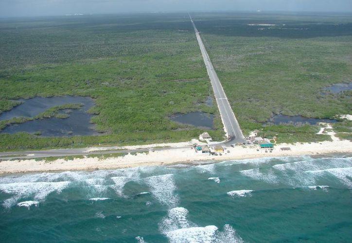 La zona oriental de la isla sería donde se comenzaría la instalación de los primeros aerogeneradores de energía eléctrica. (Gustavo Villegas/SIPSE)