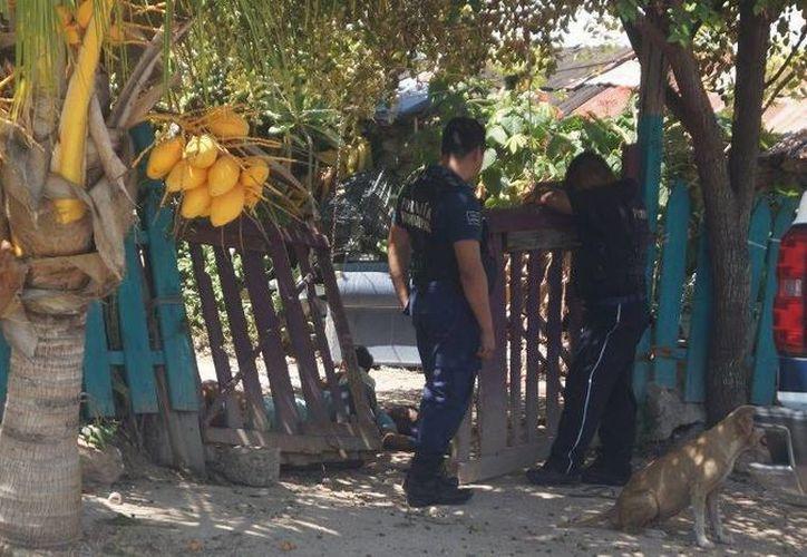 El reporte de un bebé solitario, gateando en la vía pública, fue realizado a través del 066. (Ángel Castilla/SIPSE)