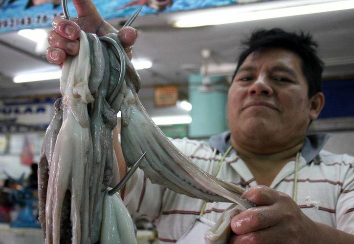 Se espera que podría superar el récord de $120 por kilo de pulpo, conseguido en la temporada de 2011. (Milenio Novedades)