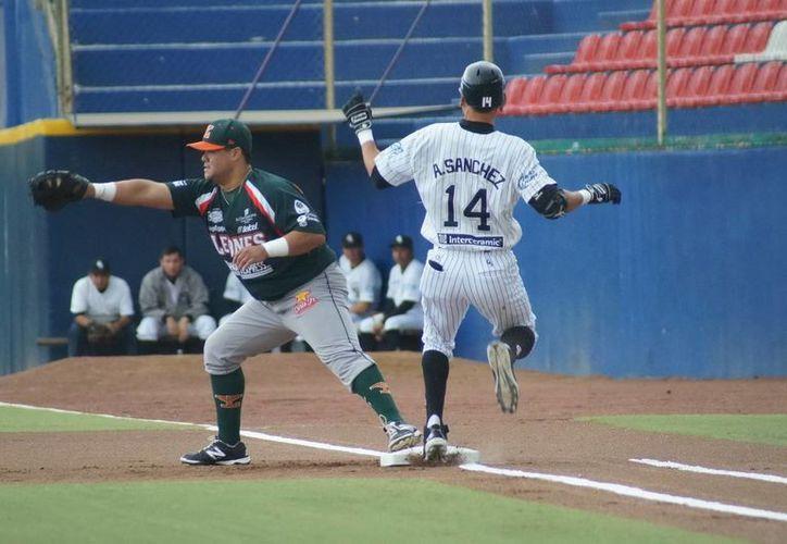 Fernando Valenzuela hijo, de Leones, espera a cachar la pelota para poner fuera de circulación a un jugador de Guerreros. (Milenio Novedades)