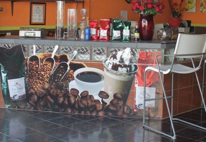La tendencia a ingerir café se acentúa en Quintana Roo. (Harold Alcocer/SIPSE)