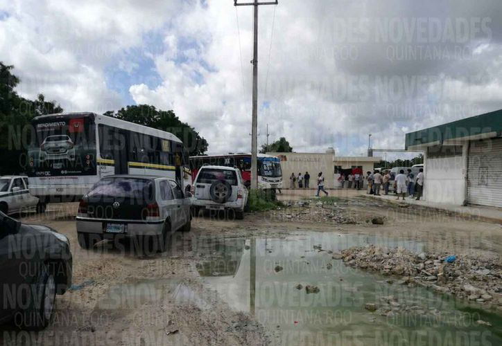 Las unidades de transporte urbano permanecieron en el encierro. (Claudia Olavarría/SIPSE)