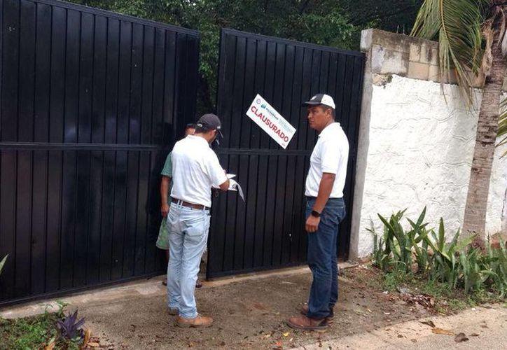 Los dueños del predio argumentaron que solo se trataba de una 'limpia' de su zona. (Foto: Octavio Martínez/SIPSE).