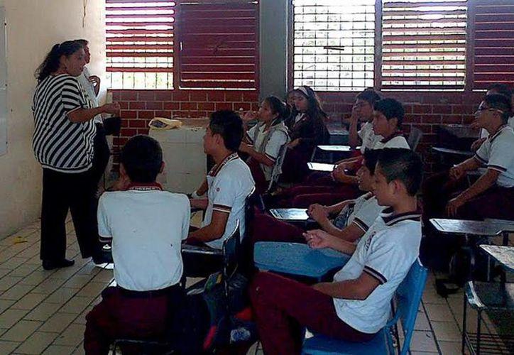 Estudiantes de secundaria crearon diversos productos cuyo principal ingrediente es el sargazo.  (Redacción/SIPSE)