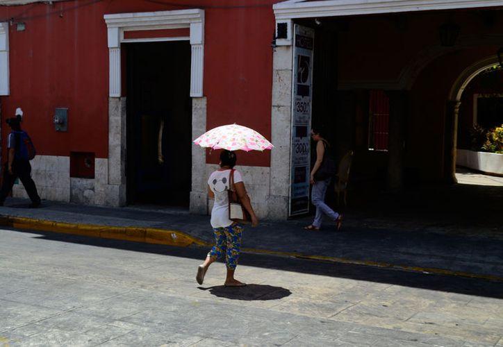 El calor aumenta en Yucatán: este martes se espera que la temperatura máxima alcance entre 35 y 38 grados Celsius. (Daniel Sandoval/SIPSE)
