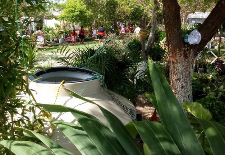 La Expo Plantas de Ornato se realizó para impulsar a los productores locales.  (Captura de Facebook/Eusebio Chuc Tun).