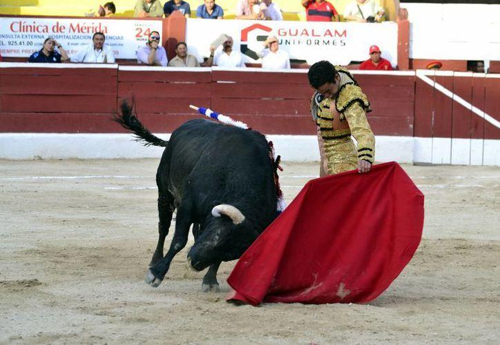La Unión de Ganaderos de Reses Bravas de Yucatán entregarán su iniciativa al Congreso antes de que den inicio las fiestas de carnaval. (Milenio Novedades)