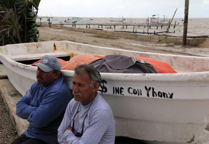 Los pescadores están desesperados porque ya casi tienen encima la fecha de cierre de captura de pepino de mar y no han podido salir a capturarlo. (SIPSE)