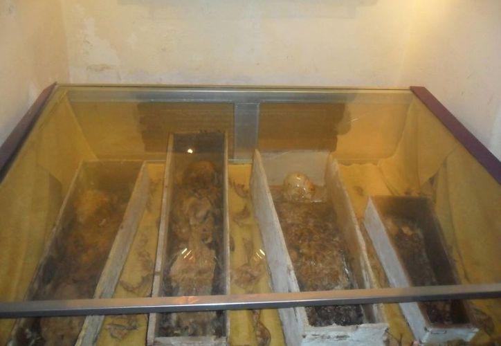 Estas son las cuatro momias empacadas al alto vacío y con temperatura especial para su conservación. (Jorge Moreno/Milenio Novedades)