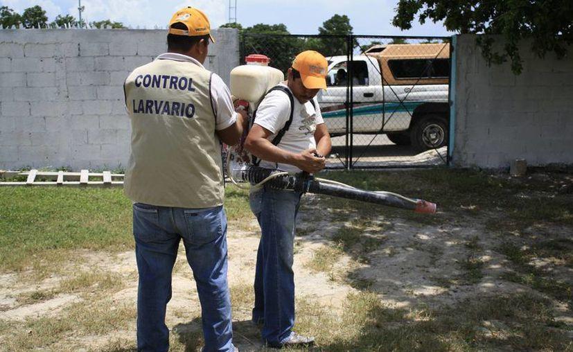 Personal de vectores lleva a cabo el monitoreo de las diferentes colonias y poblados del Estado. (Gerardo Amaro/SIPSE)